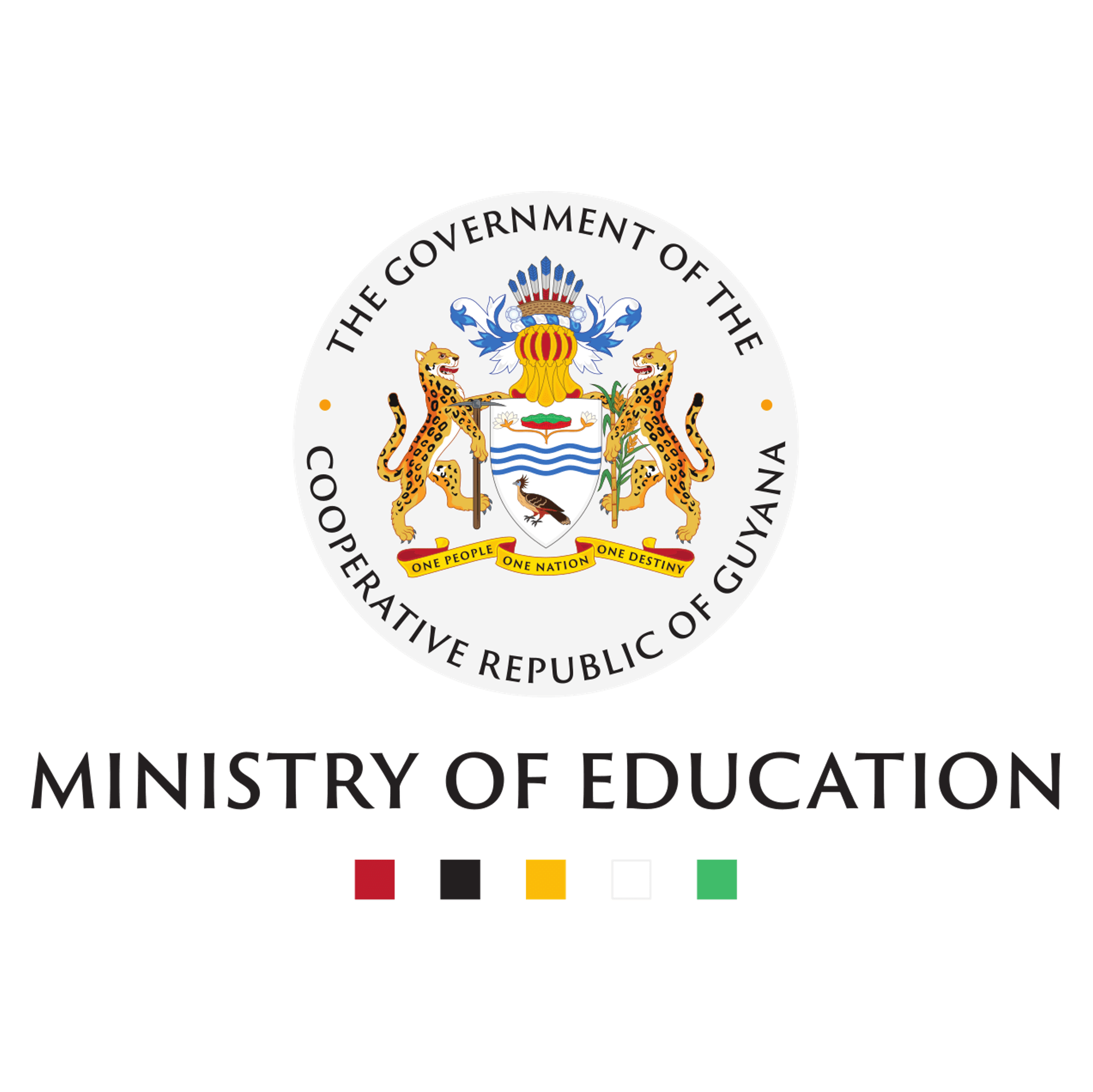 Supporting meaningful results analysis with the Guyana Ministry of Education